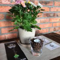 Ресторація  Ness  фото #3