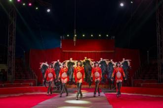 Ангели відвідають Ковель: цирк «Кобзов» підготував для містян нове шоу