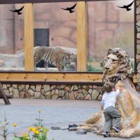 Зоопарк фото #1