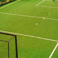 футбольне поле фото #4