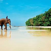 Туристичне агенство Море Турів фото #1