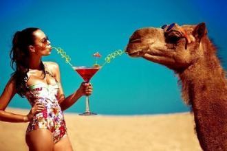 "Єгипет, Туристичне агентство ""Венера-Тур"" фото #7"