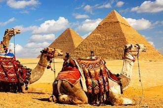 "Єгипет, Туристичне агентство ""Венера-Тур"" фото #6"