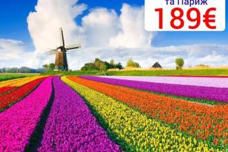 Поспішайте відвідати королівський парк тюльпанів Кекенкоф