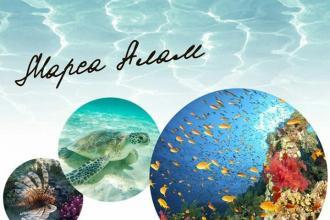 Любите вивчати підводний світ?