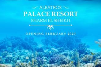 Albatros Palace Resort - 1390 доларів (2 дорослих і 2 дітей)