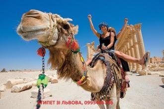 Єгипет зі Львова на осінні канікули( від 1010 доларів за 2+1)