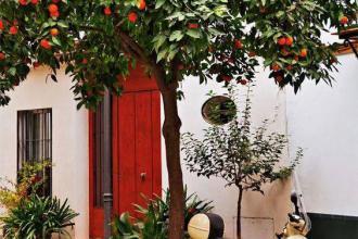 Палкий тиждень в Іспанії!Ллорет де Мар, Ніцца + Венеція