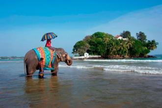 Шрі-Ланка !!! НАЙКРАЩІ ЦІНИ НА ПРЯМИЙ ЧАРТЕРНИЙ ВИЛІТ