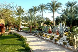 Гарячий Єгипет та улюблений Nubian з оновленим басейном «інфініті» вже зачекалися