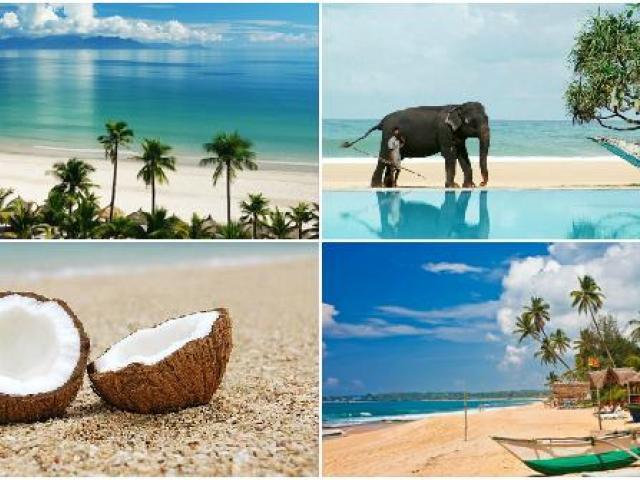 фото туру Шрі-Ланка !!! НАЙКРАЩІ ЦІНИ НА ПРЯМИЙ ЧАРТЕРНИЙ ВИЛІТ