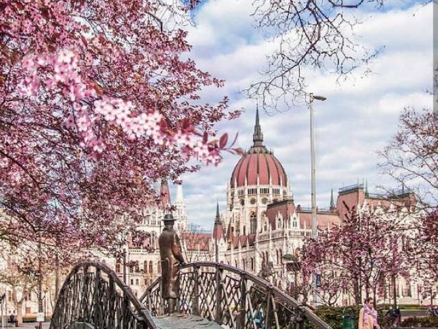 """фото туру Автобусний тур """"Вихідні у Будапешті"""""""
